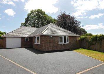Thumbnail 3 bed detached bungalow for sale in Amberwood Drive, Walkford, Christchurch