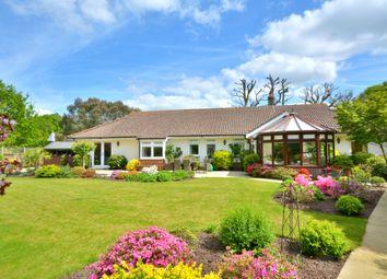 Thumbnail 4 bed detached bungalow for sale in Nyetimber Copse, West Chiltington, Pulborough