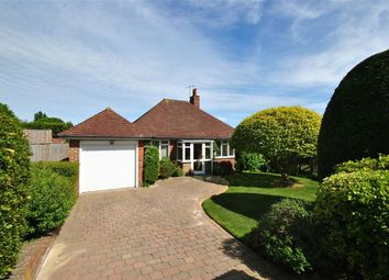 Thumbnail 3 bed detached bungalow for sale in Park Lane, Bexhill-On-Sea, East Sussex