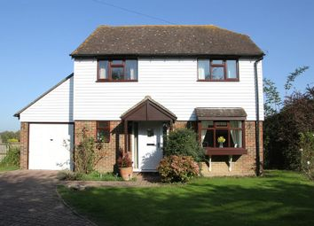 Thumbnail 4 bed detached house for sale in The Street, Appledore, Ashford