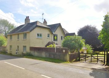 Thumbnail 4 bed detached house for sale in Lymington Bottom, Four Marks, Alton, Hampshire