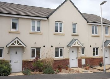 Thumbnail 2 bed terraced house to rent in Cowslip Crescent, Hele Park, Newton Abbot, Devon.