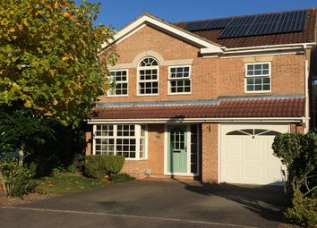 Thumbnail 4 bed detached house to rent in Chamois Close, Sawston, Cambridge