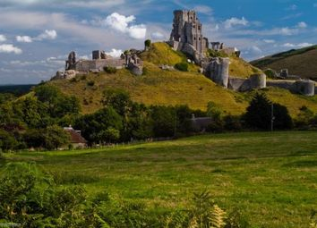Thumbnail 3 bed cottage for sale in Corfe Castle, Corfe Castle