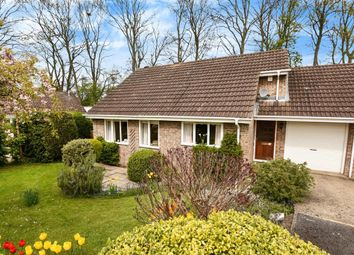 Thumbnail 2 bed detached bungalow for sale in Old Trough Way, Harrogate