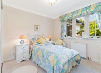 Whitehill Grove, Newton Mearns, East Renfrewshire G77