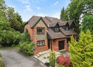 Thumbnail 4 bed semi-detached house for sale in Windlesham, Surrey