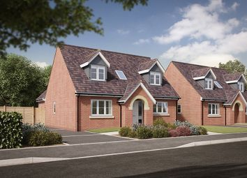 "Thumbnail 3 bed bungalow for sale in ""The Tagwell"" at Salford Road, Bidford-On-Avon, Alcester"