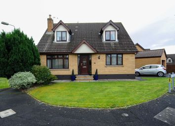 Thumbnail 4 bed detached house for sale in Old Mill Rise, Dundonald, Belfast