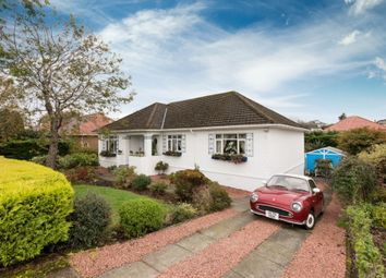 Thumbnail 3 bed detached bungalow for sale in 235 Ayr Road, Newton Mearns