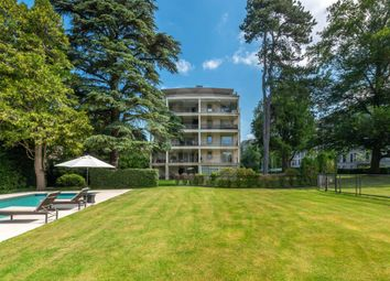 Thumbnail 6 bed apartment for sale in Genève, Genève, CH