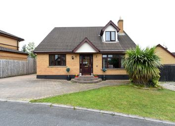 Thumbnail 4 bedroom detached house for sale in Old Mill Rise, Dundonald, Belfast
