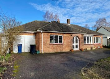 Thumbnail 3 bed detached bungalow for sale in Elm Hill, Motcombe, Shaftesbury