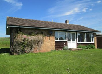 Thumbnail 3 bedroom detached bungalow to rent in Tretire, St. Owens Cross, Hereford