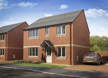 "Thumbnail 4 bed detached house for sale in ""The Thurso "" at Lanton Road, Falkirk"