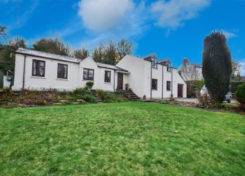 Thumbnail 5 bed detached house for sale in Stepaside, Narberth
