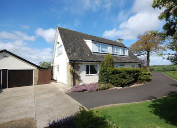 Thumbnail 4 bed detached house for sale in The Oaks, Bolton On Swale, Richmond