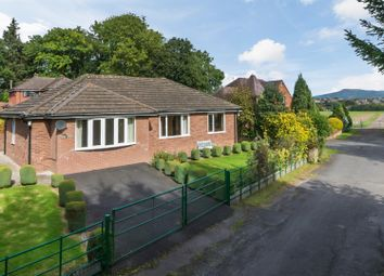 Thumbnail 3 bed detached bungalow to rent in Lower Barns Road, Ludford, Ludlow
