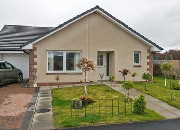 Thumbnail 3 bed bungalow for sale in Montgomerie Drive, Nairn