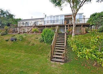 Thumbnail 5 bedroom bungalow for sale in Beer, Seaton, Devon