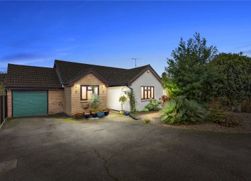 Thumbnail 3 bed detached bungalow for sale in Twin Oaks, Chelmer Village, Essex