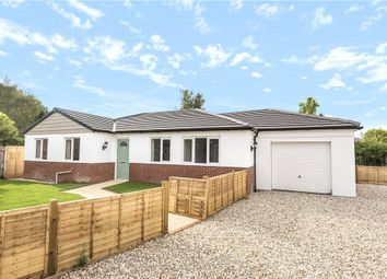 Thumbnail 3 bed detached bungalow for sale in Berrylands, Crossways, Dorchester