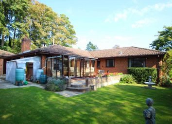 Queensborough Drive, Caversham Heights RG4. 5 bed detached bungalow
