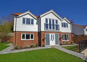 Thumbnail 4 bed detached house to rent in Lower Street, Pulborough, West Sussex