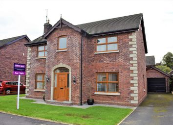 Thumbnail 4 bed detached house for sale in Ballycairn Court, Aghalee