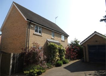 Thumbnail 4 bed detached house for sale in Wordsworth Close, Downham Market