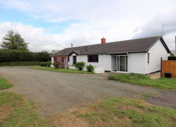 Thumbnail 4 bed detached bungalow to rent in Frithelstock, Torrington