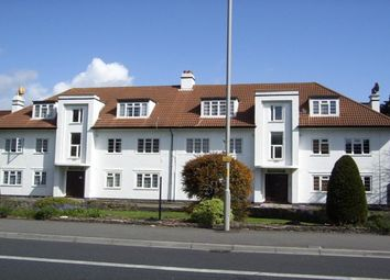 Thumbnail Studio to rent in 320 Poole Road, Poole