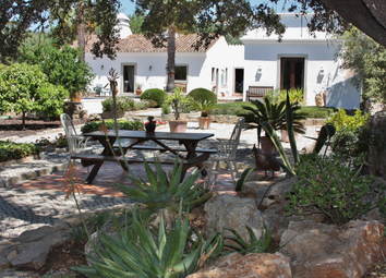 Thumbnail 3 bed country house for sale in Sao Bras De Alportel, Algarve, Portugal