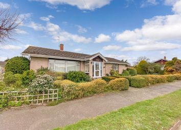 Thumbnail 4 bed detached bungalow for sale in Waveney Drive, Hoveton, Norwich