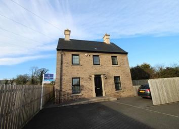 Thumbnail 3 bed detached house to rent in Lady Wallace Crescent, Lisburn
