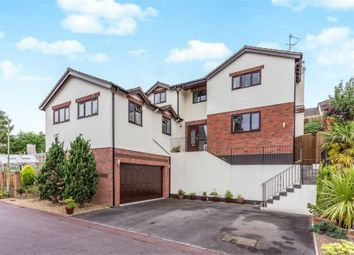 Thumbnail 4 bed detached house for sale in Meadow View, Ogwell, Newton Abbot, Devon