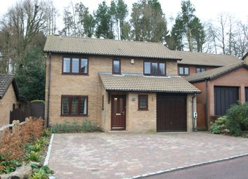 Thumbnail 4 bedroom detached house for sale in Tiffany Close, Wokingham, Berkshire
