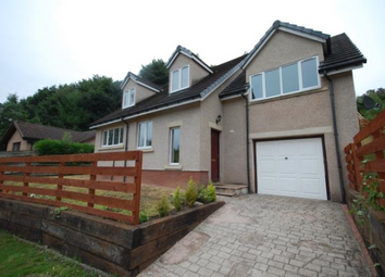 Thumbnail 4 bed detached house to rent in 15 Broadmeadows Bungalows, Yarrowford, 5Lz