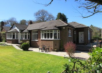Thumbnail 4 bed detached bungalow for sale in Pinewood Road, Ashley Heath, Market Drayton