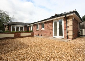Thumbnail 2 bedroom bungalow for sale in Belle Vue Grove, Middlesbrough