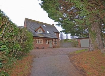 Thumbnail 5 bedroom property for sale in Pyebush Lane, Acle, Norwich