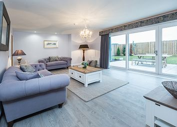 "Thumbnail 5 bed detached house for sale in ""Fetteresso"" at Carron Den Road, Stonehaven"
