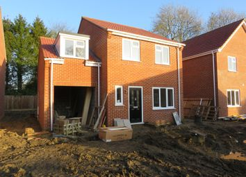 Thumbnail 4 bed detached house for sale in Wright Close, Great Ellingham, Attleborough