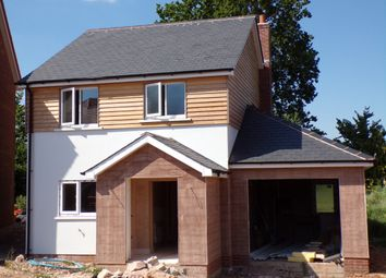Thumbnail 3 bed detached house for sale in Coly Road, Colyton