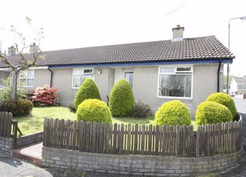 Thumbnail 2 bed semi-detached bungalow to rent in Hillside, Ballynahinch, Down