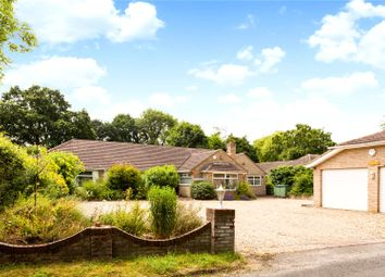 Thumbnail 5 bed detached bungalow for sale in Isington Road, Isington, Alton, Hampshire