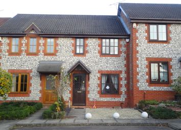 Thumbnail 2 bed town house to rent in Eddgehill Crescent, Dussindale, Norwich