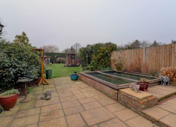 Thumbnail 3 bed semi-detached house for sale in Straight Road, Colchester