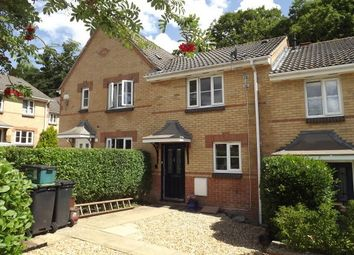 Thumbnail 2 bed property to rent in Chiltern Drive, Verwood
