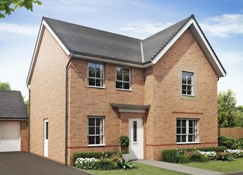 "Thumbnail 4 bed detached house for sale in ""Radleigh"" at Lukes Lane, Hebburn"